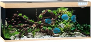 Juwel Aquarium Rio 450 Led 151x51x61 cm - Aquaria - Licht Hout
