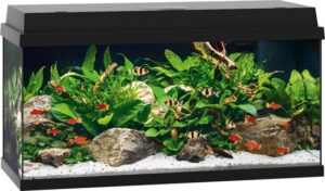 Juwel Primo 110 Aquarium - 81 x 36 x 45 cm - 110 L - Zwart