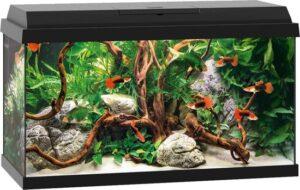 Juwel Primo Aquarium - 61 x 31 x 37 cm - 60 L - Zwart