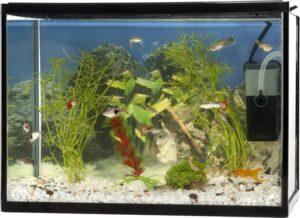 Maxxpro Aquarium Set Compleet Met Filterpomp - 35,5x26,5x21,5 cm - 18L