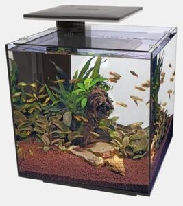 Superfish Qubiq 60 Pro Zwart aquarium