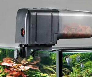 vis voederautomaat